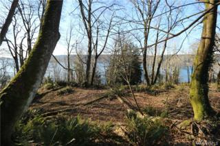 282-XX Manzanita Beach Rd SW, Vashon, WA 98070 (#1030004) :: Keller Williams Realty