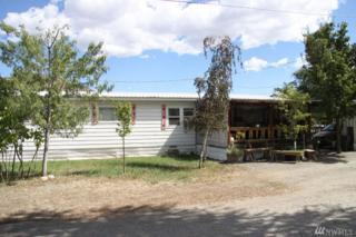 135 Johnson St, Twisp, WA 98856 (#1030020) :: Ben Kinney Real Estate Team