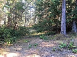 1954 Thatcher Pass Rd, Decatur Island, WA 98221 (#1031496) :: Ben Kinney Real Estate Team