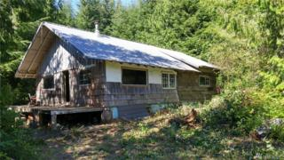 0 Na, Queets, WA 98331 (#1031923) :: Ben Kinney Real Estate Team