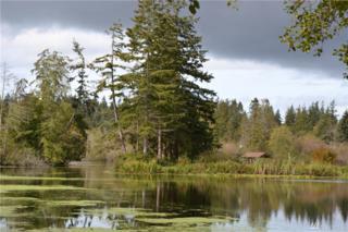 1564 Lake Dr, Camano Island, WA 98282 (#1038422) :: Ben Kinney Real Estate Team