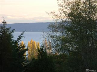 0-NHN Mutiny Bay Rd, Freeland, WA 98249 (#1038872) :: Ben Kinney Real Estate Team