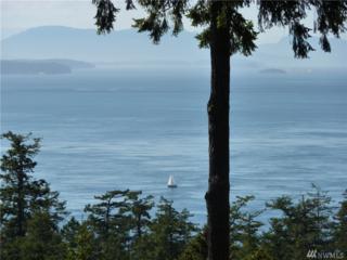 481 High Haro Dr, Friday Harbor, WA 98250 (#1040315) :: Ben Kinney Real Estate Team