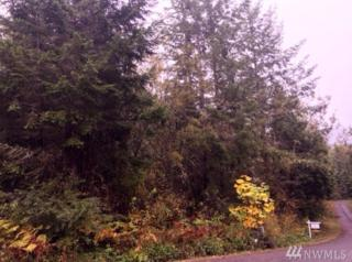 0 Blyn Springs Rd, Sequim, WA 98382 (#1041282) :: Ben Kinney Real Estate Team