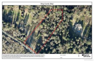 29013 SE Issaquah Fall City Rd, Fall City, WA 98024 (#1041412) :: Ben Kinney Real Estate Team