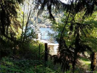 0 Cain Lake Rd, Sedro Woolley, WA 98284 (#1045597) :: Ben Kinney Real Estate Team