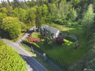 10920 S Lake Stevens Rd, Lake Stevens, WA 98258 (#1046668) :: Ben Kinney Real Estate Team