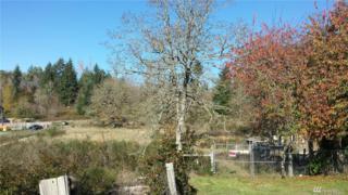 0-XXX Union Mills Rd SE, Olympia, WA 98503 (#1049806) :: Ben Kinney Real Estate Team