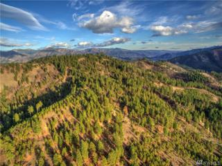 0 Mountain Home Rd, Leavenworth, WA 98826 (#1050603) :: Ben Kinney Real Estate Team