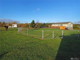 186 Buds Wy, Sequim, WA 98382 (#1050617) :: Ben Kinney Real Estate Team