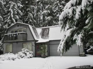 16319 Alpine Dr E, Greenwater, WA 98022 (#1054838) :: Ben Kinney Real Estate Team