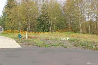 26 Timber Lane, Elma, WA 98541 (#1054998) :: Ben Kinney Real Estate Team