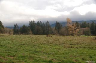 0 Witherbee Lot 1 Rd, Kelso, WA 98626 (#1055159) :: Ben Kinney Real Estate Team