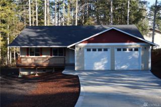 151 SE Sunrise Dr, Shelton, WA 98584 (#1058661) :: Ben Kinney Real Estate Team