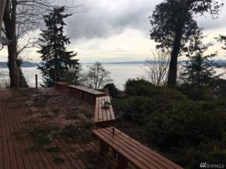 10807 Seaview Dr, Anderson Island, WA 98303 (#1061863) :: Ben Kinney Real Estate Team
