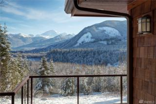 8174 Mt Baker Hwy, Deming, WA 98244 (#1062626) :: Ben Kinney Real Estate Team