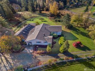 11623 189 Ave SE, Snohomish, WA 98290 (#1062814) :: Ben Kinney Real Estate Team