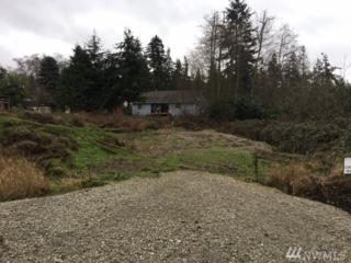 374 Mayer St, Coupeville, WA 98239 (#1064386) :: Ben Kinney Real Estate Team