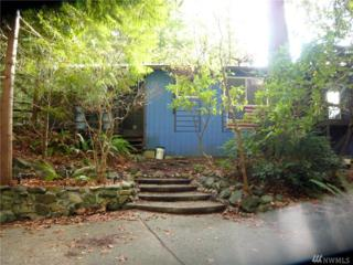300 Whale Rd, Brinnon, WA 98320 (#1065975) :: Ben Kinney Real Estate Team