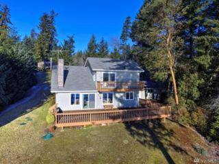 211 E Robbins Rd, Grapeview, WA 98546 (#1066895) :: Ben Kinney Real Estate Team