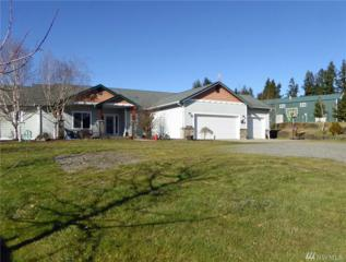 21341 Michigan Hill Rd SW, Rochester, WA 98579 (#1066998) :: Ben Kinney Real Estate Team