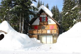 1 Alpental Strasse, Snoqualmie Pass, WA 98068 (#1068672) :: Ben Kinney Real Estate Team