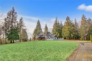 21036 Lake Sixteen Rd, Mount Vernon, WA 98274 (#1070796) :: Ben Kinney Real Estate Team