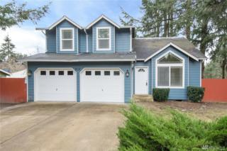 9112 147th St Ct NW, Gig Harbor, WA 98329 (#1071268) :: Ben Kinney Real Estate Team