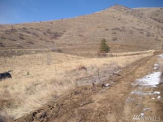 6212 Entiat River Rd, Entiat, WA 98822 (#1072225) :: Ben Kinney Real Estate Team