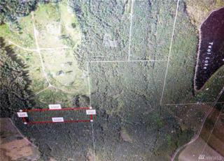 0 Teal Lake Rd, Port Ludlow, WA 98365 (#1076243) :: Ben Kinney Real Estate Team