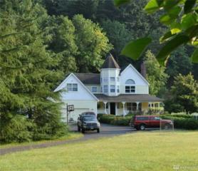 37414 NE Washougal River Rd, Washougal, WA 98671 (#1076443) :: Ben Kinney Real Estate Team