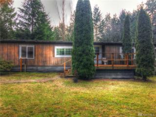 581 E Rivendell Rd, Grapeview, WA 98546 (#1077176) :: Ben Kinney Real Estate Team
