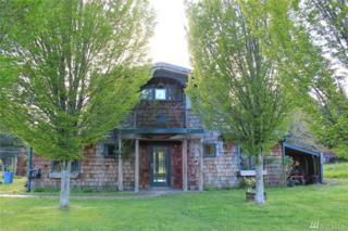 10520 SW 140th St, Vashon, WA 98070 (#1078236) :: Ben Kinney Real Estate Team