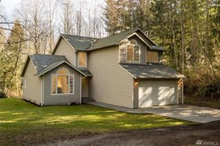 442 Ezduzit Lane, Camano Island, WA 98280 (#1079251) :: Ben Kinney Real Estate Team