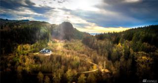 21224 Little Mountain Rd, Mount Vernon, WA 98274 (#1082192) :: Ben Kinney Real Estate Team