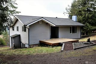 925 Luebke Rd, Toutle, WA 98649 (#1082866) :: Ben Kinney Real Estate Team