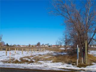 8074 NE Teal Rd, Moses Lake, WA 98837 (#1083067) :: Ben Kinney Real Estate Team