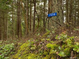 7314 Holiday Blvd, Guemes Island, WA 98221 (#1083332) :: Ben Kinney Real Estate Team