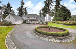 2916 115th Ave NW, Gig Harbor, WA 98335 (#1083347) :: Ben Kinney Real Estate Team