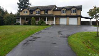 20168 Okerlund Dr, Mount Vernon, WA 98274 (#1084123) :: Ben Kinney Real Estate Team