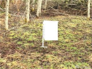 99999 Shire Lane, Joyce, WA 98343 (#1084402) :: Ben Kinney Real Estate Team