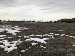0-NNA Robinson Rd, Moses Lake, WA 98837 (#1085121) :: Ben Kinney Real Estate Team