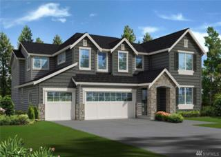 254 212th Place NE, Sammamish, WA 98074 (#1085440) :: Ben Kinney Real Estate Team