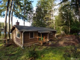421 E Trails End Dr, Belfair, WA 98528 (#1085876) :: Ben Kinney Real Estate Team