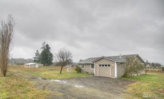 3916 163rd Ave SW, Tenino, WA 98589 (#1087622) :: Ben Kinney Real Estate Team