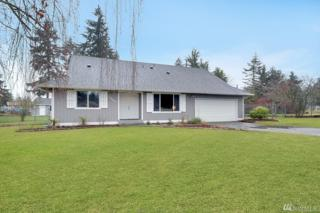 1007 Military Rd E, Tacoma, WA 98445 (#1088425) :: Ben Kinney Real Estate Team