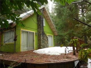 63908 NE Index Creek Rd, Baring, WA 98224 (#1088719) :: Ben Kinney Real Estate Team