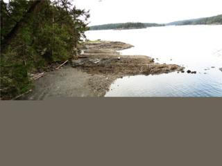 685 Broken Point Rd, Shaw Island, WA 98286 (#1089599) :: Ben Kinney Real Estate Team