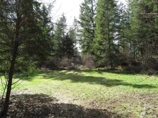 33522 68th Ave S, Roy, WA 98580 (#1090071) :: Ben Kinney Real Estate Team