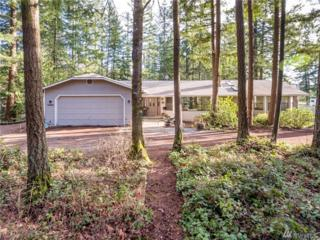 20307 SE 248th St, Maple Valley, WA 98038 (#1090766) :: Ben Kinney Real Estate Team